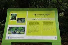 Information About Botanical Garden Typical Information Board In Bahasa And About Next Photo