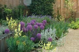 amazing modern garden design plants on simple decor with modern