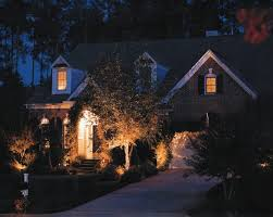 Outdoor Up Lighting For Trees Outdoor Uplighting
