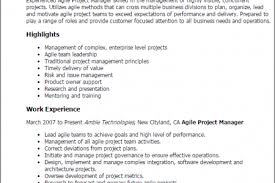 Architectural Draftsman Resume Samples by Design Head Project Manager Resume Samples Waitress Safety