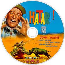 elsa martinelli hatari hatari movie fanart fanart tv