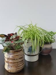 upcycled ceramic plant pots favecrafts com