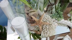 Mirror Vases Natural Sea Coral Dry Starfish White Ship Green Succulent