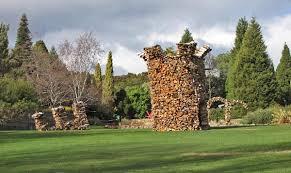 siege social botanic siege royal tasmanian botanical gardens think tasmania com