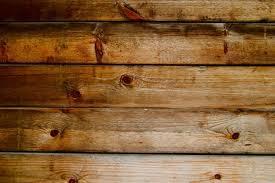 Fleas And Hardwood Floors - how to treat fleas on hardwood floors u2013 meze blog