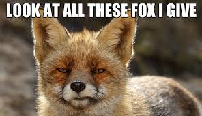 What Did The Fox Say Meme - what does a fox say by redtrainer meme center
