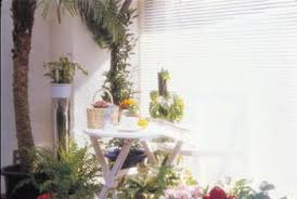 home decorating with palm trees home guides sf gate