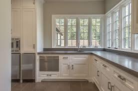 building a dishwasher cabinet fridge next to dishwasher design ideas