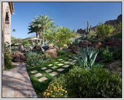 desert landscaping ideas home design ideas