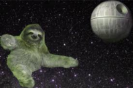 Angry Sloth Meme - sloth space gif find download on gifer