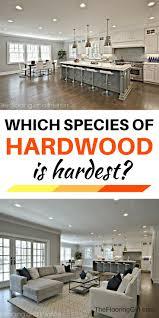 Brazilian Koa Hardness by 96 Best Hardwood Species Images On Pinterest Flooring Ideas