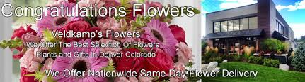 congratulations flowers congratulations flowers same day delivery veldk s flowers