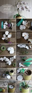 origami orchid tutorial make a gorgeous paper orchid plant lia griffith