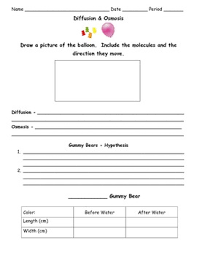 osmosis and diffusion worksheet free worksheets library download