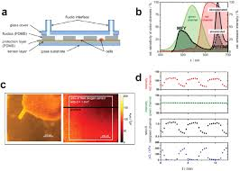 microfluidic platforms employing integrated fluorescent or
