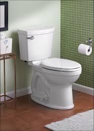 Toilet Bidet Combined Japanese Style Toilet Uk Full Size Of Bathroom Amazing Washlet