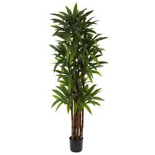 nearly natural 6 5 ft dracaena tree 5403 the home depot