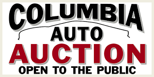 auctions carolinas independent automobile dealers association