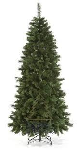 montana pine tree slim trees