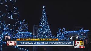 cincinnati zoo festival of lights hours festival of lights hundreds gather to watch christmas tree lighting