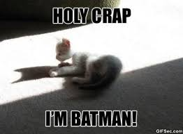 Im Batman Meme - im batman viral viral videos