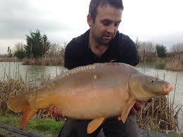 Pezon Michel 2014 By Chris by 2014 Catch Reports Todber Manor Fisheries