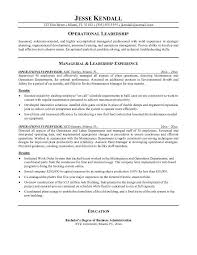 Examples Resume by 17 Best Resumes Images On Pinterest Sample Resume Resume