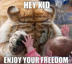 Eye Of The Tiger Meme - tiger memes best collection of funny tiger pictures