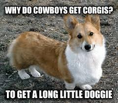 Corgi Birthday Meme - luxury corgi birthday meme livememe bad joke corgi kayak wallpaper