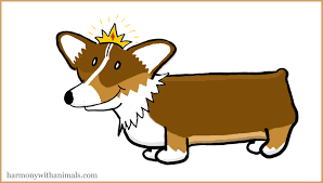 The Queen S Corgi Queen Corgi Cartoon U0027you Ask Her To Clean Our Feet U0027 Corgi