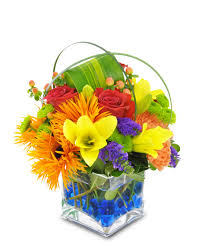flower delivery houston baby boy flowers newborn flowers flowers newborn arizona florist