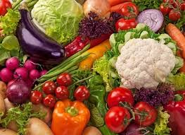 vegetable garden layout for beginners the beginner how to start a