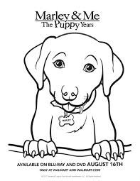 christmas puppy coloring pages printable golden retriever free pet