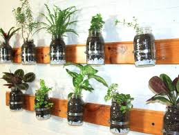 plant wall hangers indoor 6 creative hanging gardens that you can make yourself inhabitat