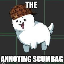 Annoyed Dog Meme - annoying dog is a meme scum imgflip