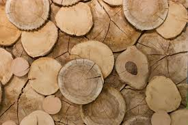 abstract wood abstract wood log background up stock photo image 11746094