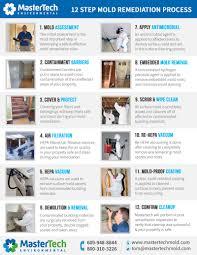 basement mold removal in nj u2013 professional guaranteed