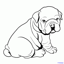 concept design cute bulldog drawing images