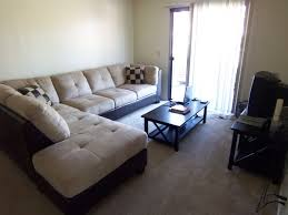 Apartment Decor Ideas Inexpensive Apartment Decorating Ideas With Nifty Living Room