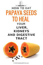 how to eat papaya seeds to heal your liver kidneys and digestive