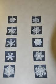 snowflake bentley camera snowflake bentley story and activities fun u0026 engaging