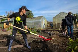 can san jose revitalize local food and farms in silicon valley