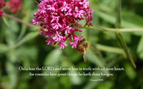 praise and thanksgiving verses bible u0026 nature desktop backgrounds powerful and uplifting from