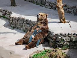 Sad Keanu Reeves Meme - sad bear holds sad keanu reeves as they have a deep moment of