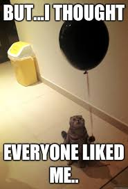 Balloon Memes - but i thought everyone liked me balloon cat quickmeme