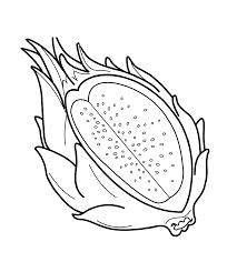 dragon fruit fruits coloring pages pinterest patterns
