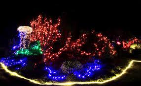 botanical gardens fort bragg ca festival of lights glittering lights sweet treats live music past events mcbg