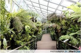 Singapore Botanic Gardens Location Singapore Botanic Gardens Reviews Singapore Attractions