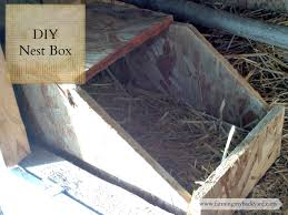 diy nest box for rabbits or chickens farming my backyard