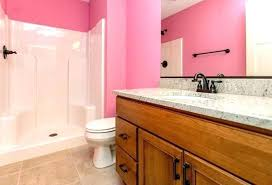 pink bathroom decorating ideas pink bathroom decorating ideas pink bathrooms decor ideas create